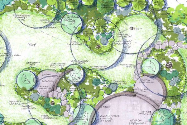 Landscape Design by Sunstate Companies by Sunstate Companies of Las Vegas