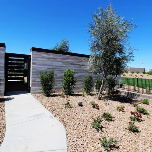 Axis - Landscape Project by Sunstate Companies of Las Vegas