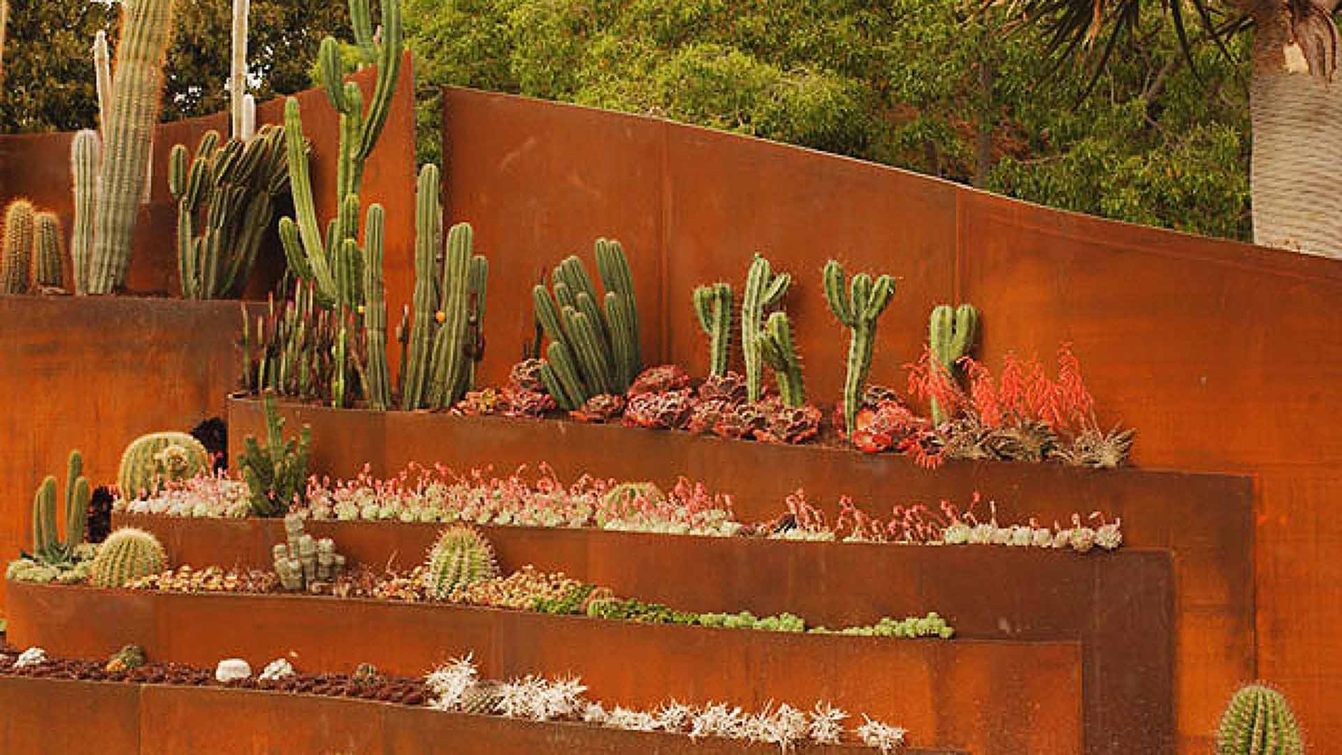 Best Desert Xeriscapes