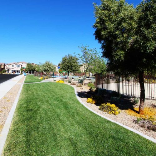 Monterey-Ranch - Landscape Project by Sunstate Companies of Las Vegas